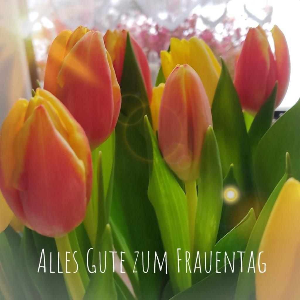 Blumen Zum Internationalen Frauentag